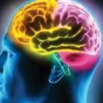 سکته-مغزی1