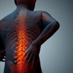کلینیک-دردهای-اسکلتی-عضلانی